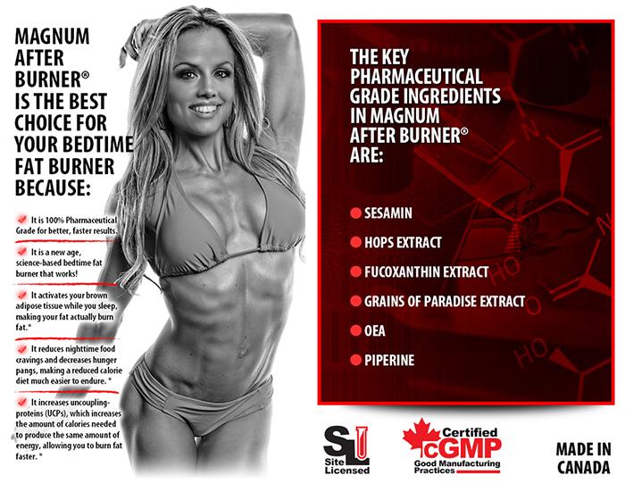 magnum-afterburner-info3.jpg