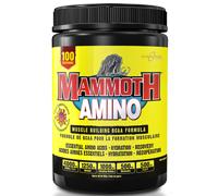 mammoth-amino-100serv.jpg