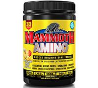 mammoth-amino-285g-30-servings-pineapple-mango