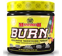 mammoth-burn-240g-60-servings-fruit-punch