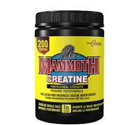 mammoth-creatine-1kg.jpg