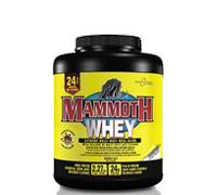 mammoth-whey-chocolate.jpg