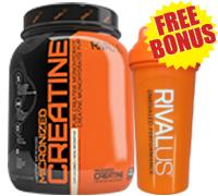 rivalus-creatine-1200g-free-bonus-rivalus-shaker