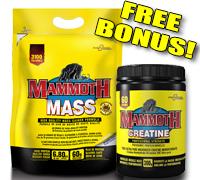 MAMMOTH-MASS-CREATINE-COMBO