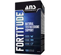 ans-fortitude-v2