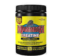 mammoth-creatine-1kg.jpg