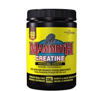 mammoth-creatine-300g.jpg